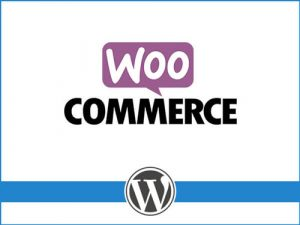 WooCommerce SEO: ottimizzazione di ecommerce per i motori di ricerca.
